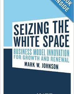 seizing the white space book review